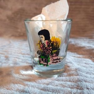 Unique vintage Graceland shotglass